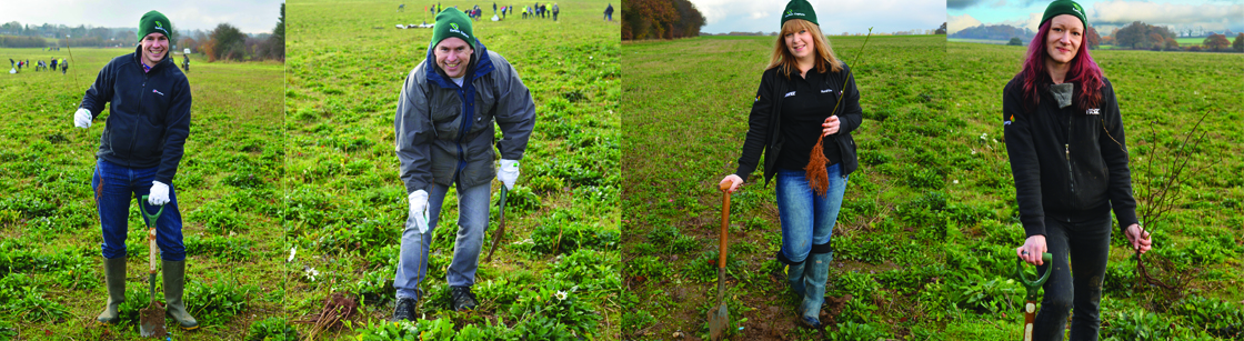 Tree planting event with the Woodland Trust - the team at work