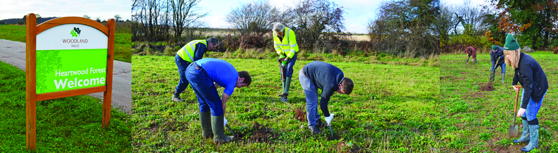 Tree planting event with the Woodland Trust - the action